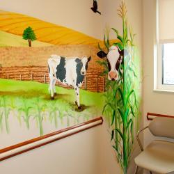 Pediatric Exam Room - Streetsboro, OH